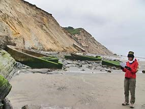 Cliff erosion at Fort Funston