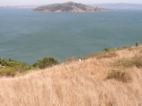 Brown hillsides of the summer drought