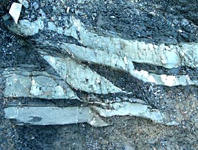 Photo of shale and sandstone beds with small fault