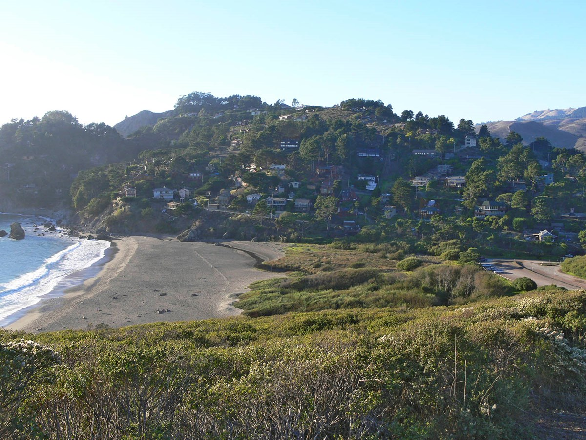 Landscape shot of Muir Beach