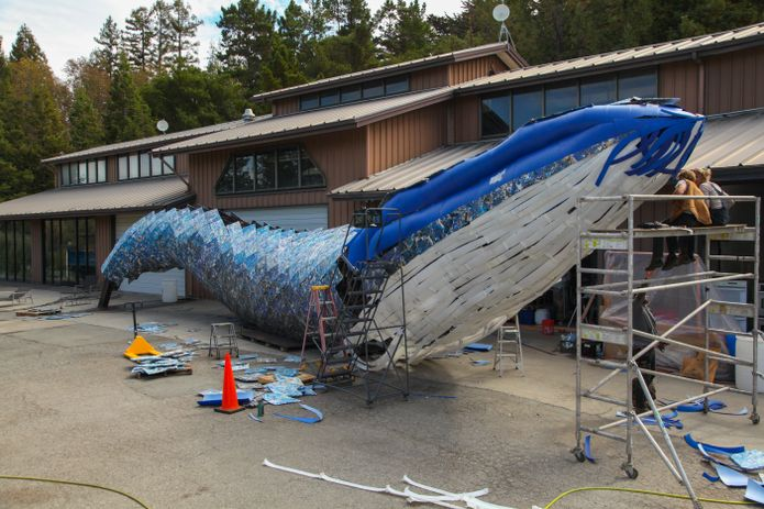 Artists Joel Dean Stockdill and Yustina Salnikova sit atop scaffolding at the construction site of Monterey Bay Aquarium's life-sized blue whale art installation made from discarded single-use plastic.