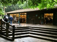 Visitors walk pass wooden building with six steps leading up to building at Muir Woods National Monument.