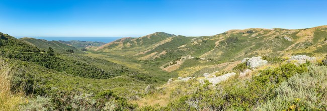 A wide open valley leading to the pacific ocean. Some rocks sit amidst coastal scrub in the foreground.