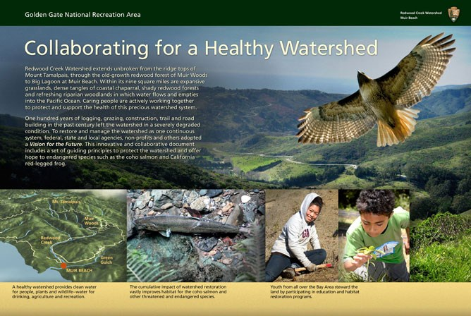 """Collaborating for a Healthy Watershed"" wayside exhibit panel at Kaashi Way, Muir Beach."