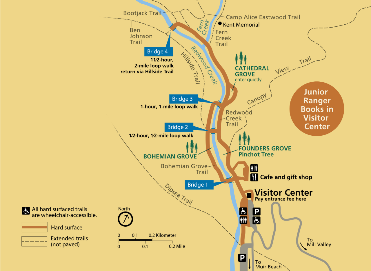 Muir Woods Main Trail - Golden Gate National Recreation Area (U.S. National  Park Service)