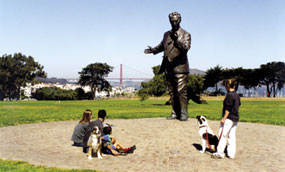 Visitors and their pets at Fort Mason, GGNRA