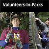 Volunteers-In-Parks helping replant native vegetation.