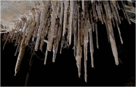 lint build up in Lehman Caves