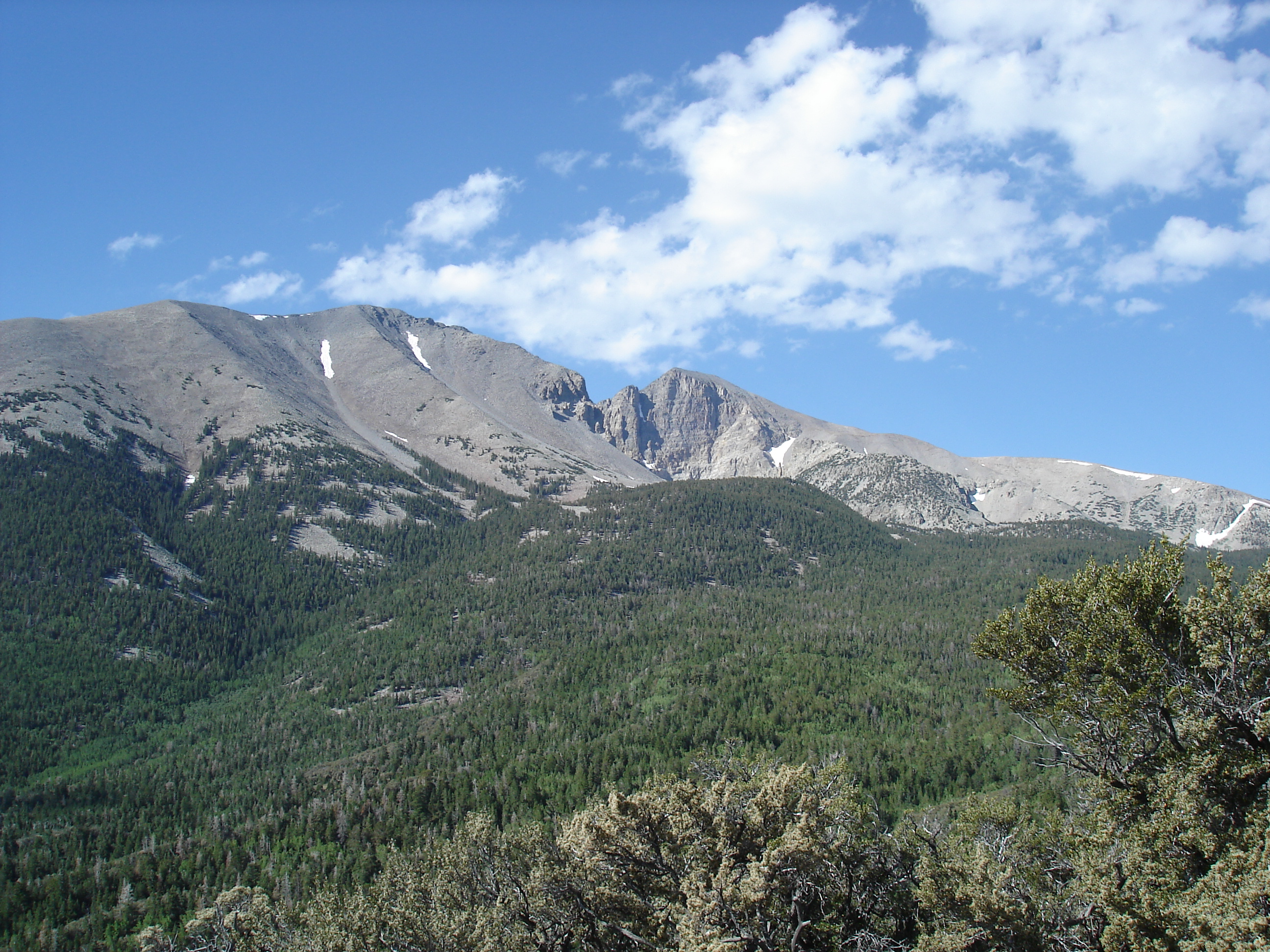 Wheeler Peak from Mather Overlook