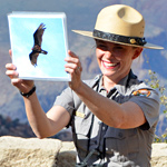 park ranger holding up condor photo