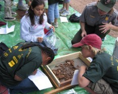 Students sifting for artifacts.