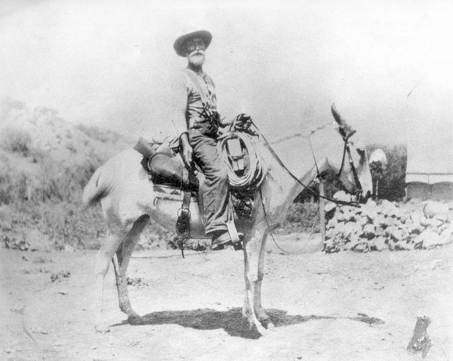 Pioneer man on white mule