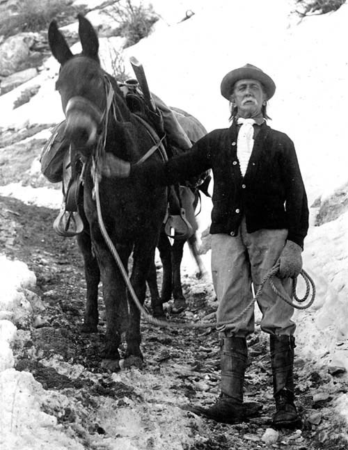 A black and white photograph of a man standing next to a mule.