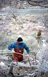 ZUNI CONSERVATION PROGRAM PERSONNEL CONSTRUCTING CHECKDAMS NEAR AN ARCHAEOLOGICAL SITE TO SLOW DOWN EROSION