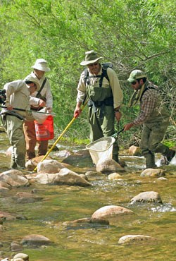 4 members of the electrofishing crew.