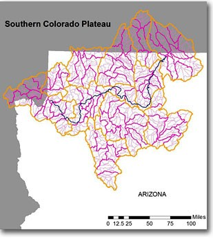 drainage map - Southern Colorado Plateau