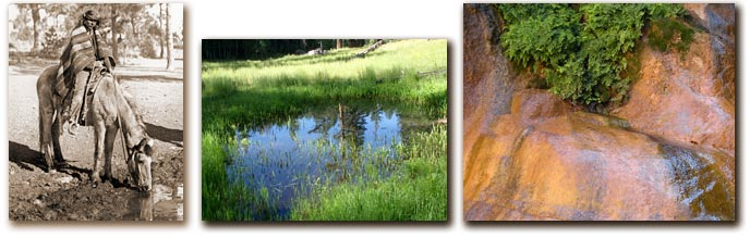 Three photos. From left to right: an American Indain watering his horse at a spring, Kanabownits Spring, a small spring with some ferns; part of the rock is wet.