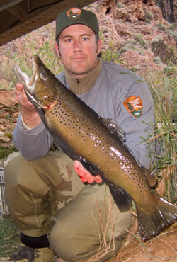 large trout from Bright Angel Creek