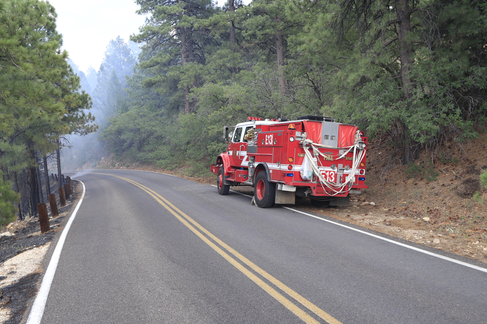 A red fire truck sits parked along the road surrounded by green trees