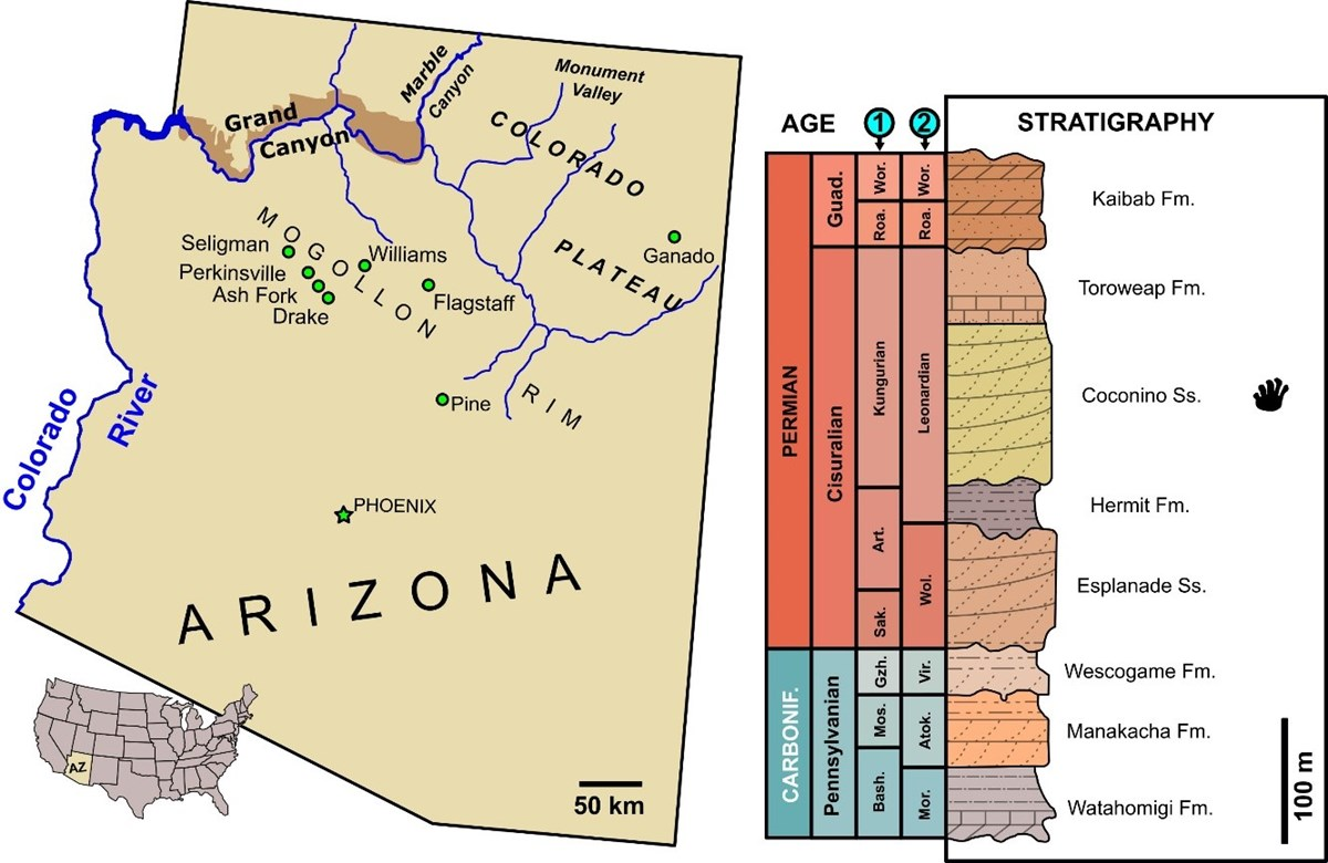 A map of Arizona and stratigraphic section of rocks exposed in Grand Canyon.