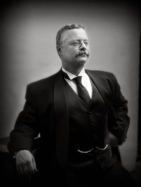 Joe Wiegand as Theodore Roosevelt