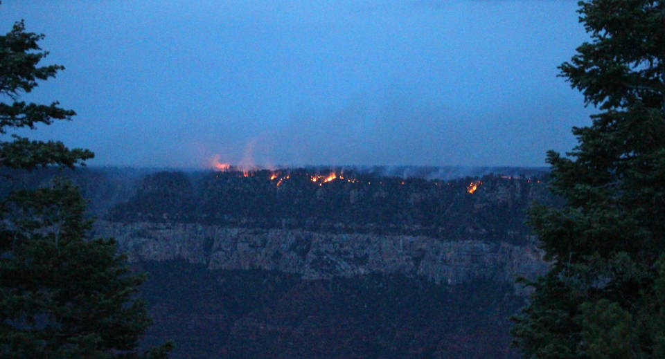 From a distance, during twilight: spots of fire burning along the forested edge of a canyon cliff.