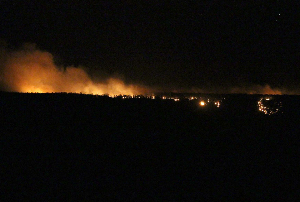 night view of a wildfire burning on the horizon. individual trees and smoke overhead is illuminated by the flames