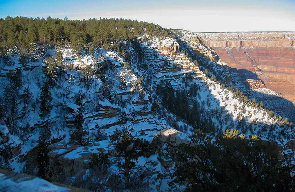 snow-covered cliffs dropping into a large canyon below a forested plateau.