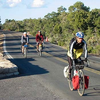 Three bicyclists riding on a paved road along the edge of a forested area.