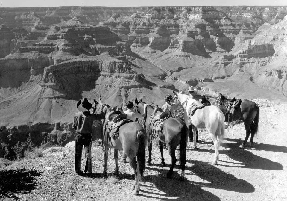 Standing on the edge of a vast canyon landscape of buttes and cliffs, a guide and three riders are standing next to their respective horses.