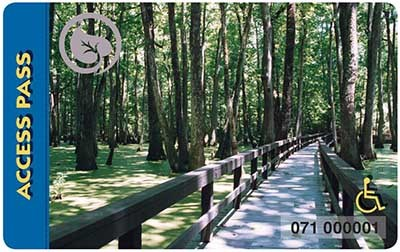 Crossing a swampy area while standing on a wooden walkway with handrails on either side. The walkway is on the edge of a grove of trees.