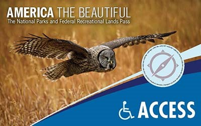 2018 Access pass depicting an owl flying over a field of grain
