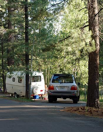 Car parked facing in a pull-through campsite detached from a small, white, rounded trailer.