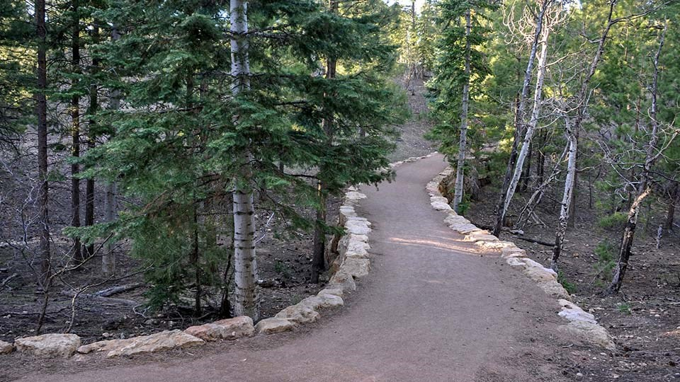 an hard-packed dirt path with rock lining on either side, winding through a forested area.