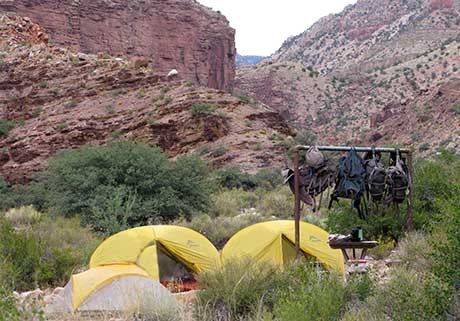 two yellow dome tents in a backcountry campsite within canyon walls. a number of backpacks are hanging well above the ground from a metal pole
