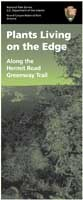 cover of Hermit Road greenway plant guide