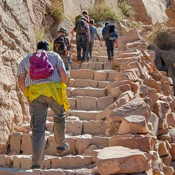 a family with several children are climbing a steep section of trail made of stone steps