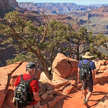 Two hikers, wearing summer clothes, are descending an unpaved trail into a vast canyon.