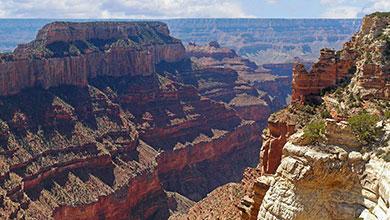 eBird Hotspots - AZ-Grand Canyon North Rim