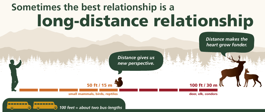 "Graphic showing correct viewing distance for small and large animals; text: ""Sometimes the best relationship is a long-distance relationship"""