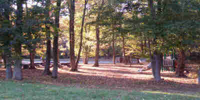 a picture of the Sweetgum Picnic Area