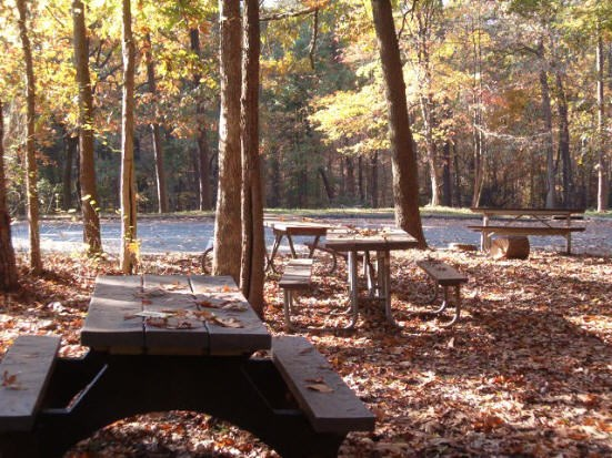 a picture of the Holly picnic area
