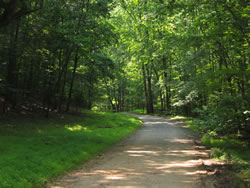 The Carriage Road trail on a nice summer day.