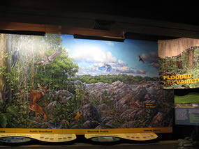 Photo of a new exhibit in the Visitor Center