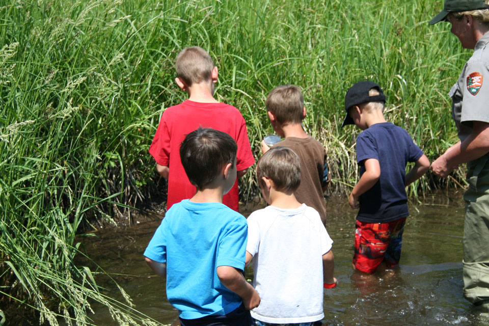 Children explore cottonwood creek during a Summer Explorer Program