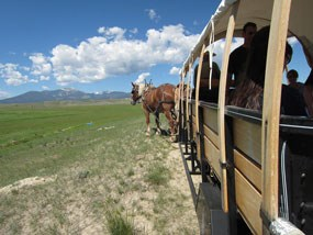 Horse drawn wagon on the ranch with Mount Powell in the distance.