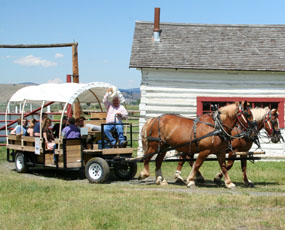 Visitors on a horse drawn wagon tour.