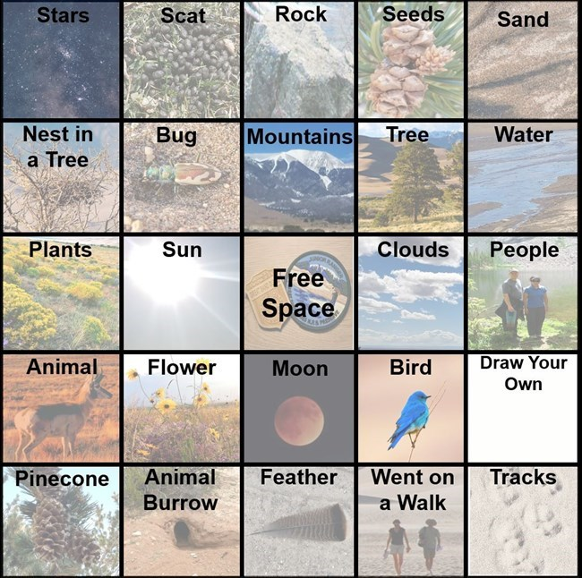 GRSA-Backyard-Bingo