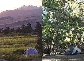 Campsites showing an open view site and a shaded site