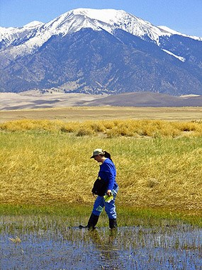 Researcher explores a wetland